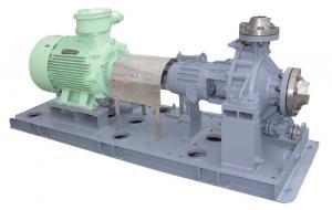 API 610 OH1/OH2 Pump